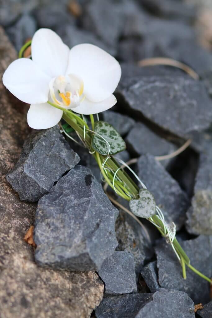 Hochzeit Anstecker OrchideeHochzeit Anstecker Orchidee